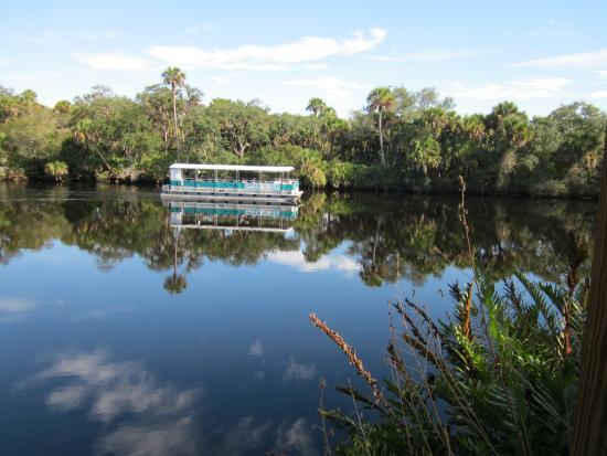 Snook Haven Park: Myakka River tour boat.