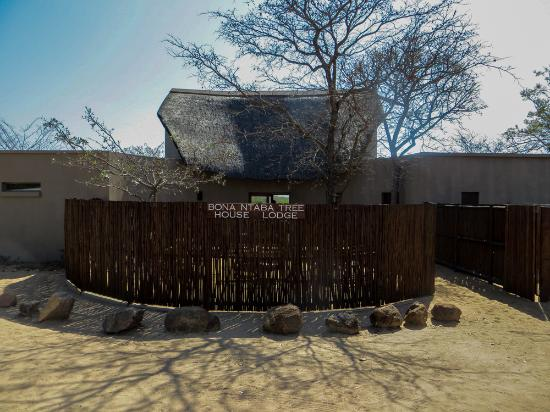Bona Ntaba Self Catering Tree House Lodge : Front of the lodge