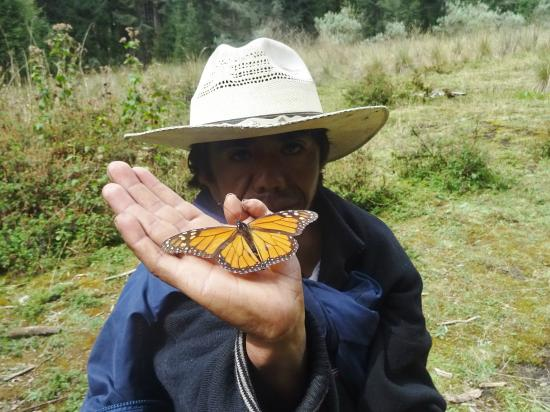 Piedra Herrada Sanctuary: My one butterfly !