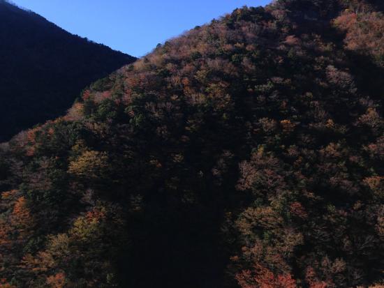 Sumatakyo Valley: 2014 11 22  bibyokohama