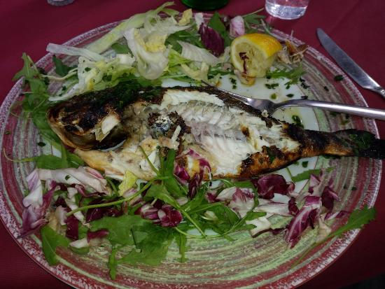 La Cantina dei Mille: The BEST grilled Fish ever!