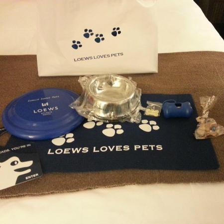 Loews Atlanta Hotel: Pet Goodie bag at check-in