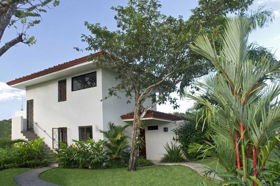 Casa Frangipani: Tree House