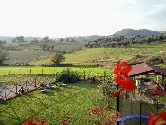 Agriturismo La Valle degli Ulivi: Il nostro giardino