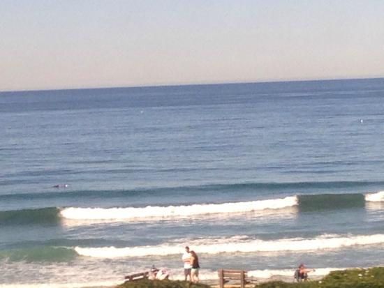 Pacific Surfliner: ocean views