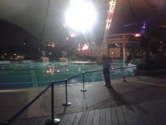 The Venice Raytour Hotel Shenzhen: piscina in notturna