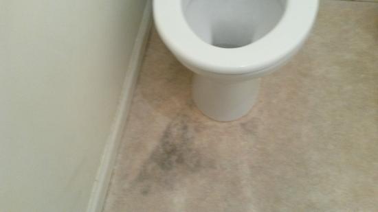 York Place B&B: dirty bathroom floor