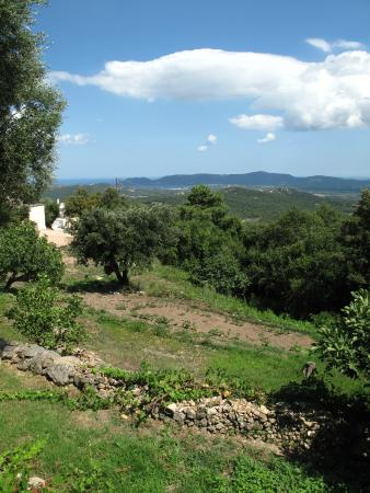 Vue sur les chambres photo de les jardins de mathieu porto vecchio tripadvisor - Les jardins du golfe porto vecchio ...
