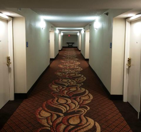 Holiday Inn Express Tampa - Rocky Point Island: The Hallway with fresh Carpet