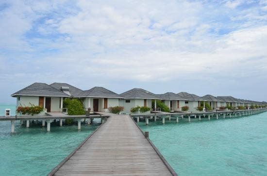 Water Bungalows Picture Of Sun Island Resort And Spa