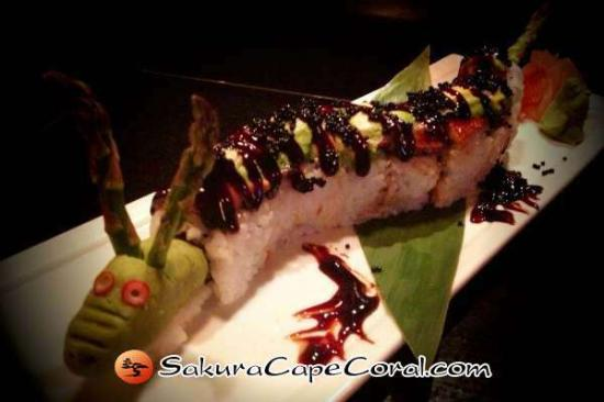 Sakura Japanese Steak House & Sushi Bar: Cape Coral Sushi - Black Dragon Roll