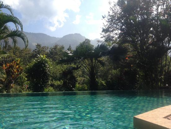 Hillside - Nature Lodge: The view from the pool