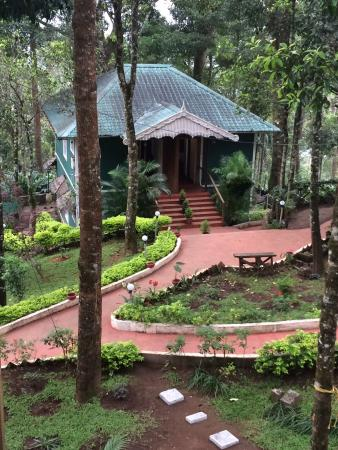 Blue Bells Valley Resort: View from tree house