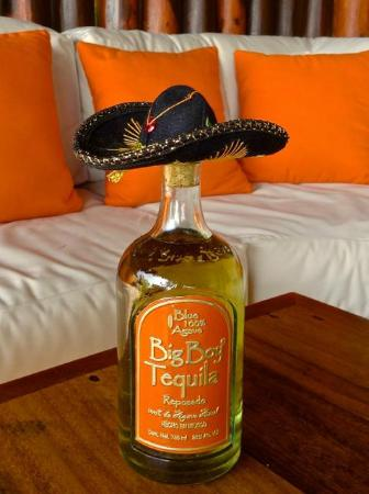 The Inn at Manzanillo Bay : Tequila sold at hotel