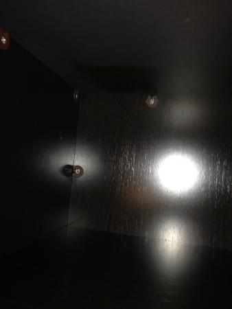Quality Inn Woodside : Just left above the small flash of light on the left is a brown cockroach found on the inside cl