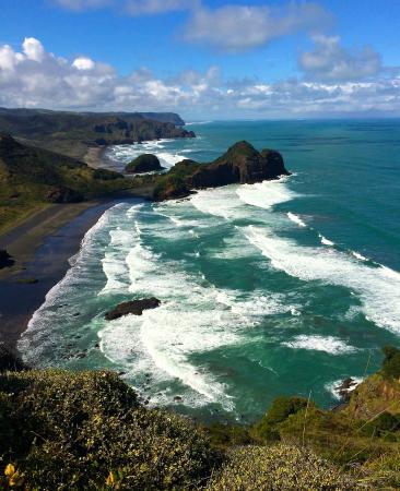 Bethells Beach: View from the Te Henga walkway