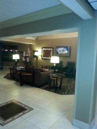 Comfort Inn & Suites Alexandria : Lobby