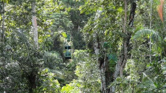 Gamboa Rainforest Resort Aerial Tram Tour : Ride up the tram