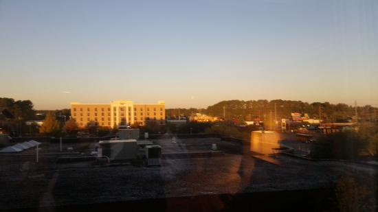 Hilton Greenville: Amazing view from the room