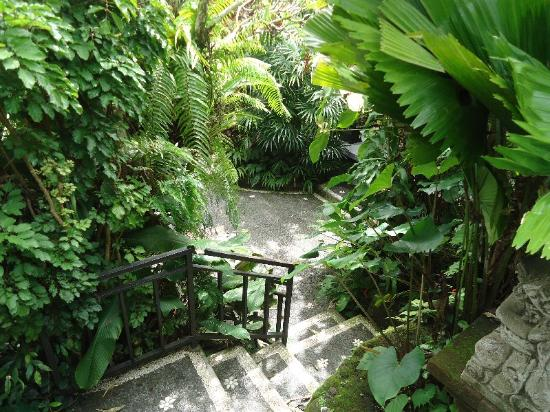 Sama's Cottages and Villas: Tranquility in Ubud - Sama's Cottages
