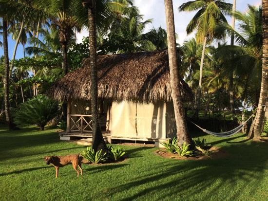 Casa Coson : Massage bungalow, enough said