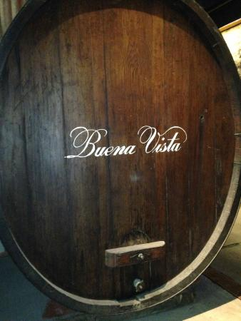 Buena Vista Winery: Barrel from inside the cave