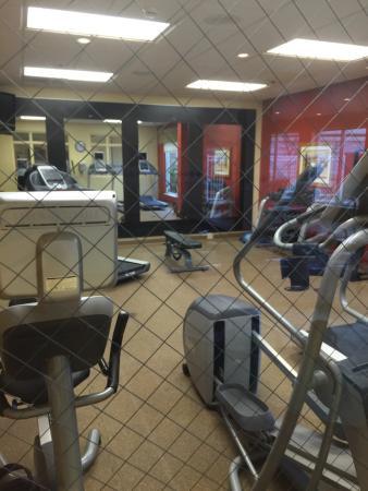 Hilton Garden Inn Indianapolis/Carmel: Work out facility