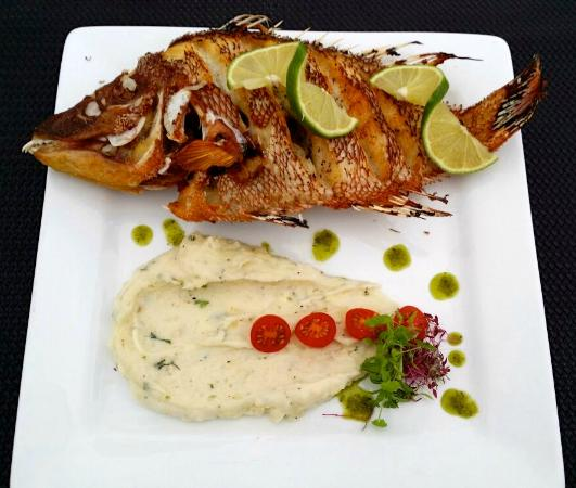 Whole fried fish picture of big fish seafood restaurant for Fried fish restaurant