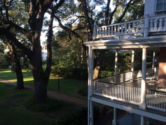The Elms Bed and Breakfast: A room with a view.
