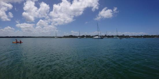 Noosa Shores Resort: View from jetty - Noosa river