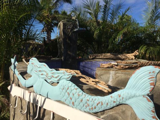 Baja Beach Oasis: Ahhh relaxation