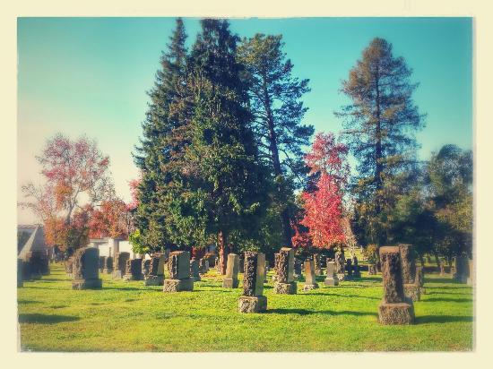 Mountain View Cemetery: Mountain view cementery