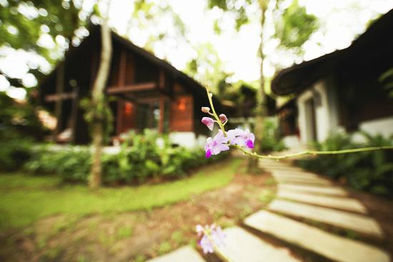 The Tubkaak Krabi Boutique Resort: Orchid