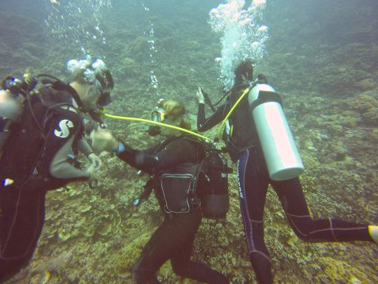 Diveasy: Laurent sharing air with another diver