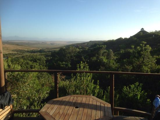 BokBus Garden Route Adventure Tours - Day Tours: Game lodge