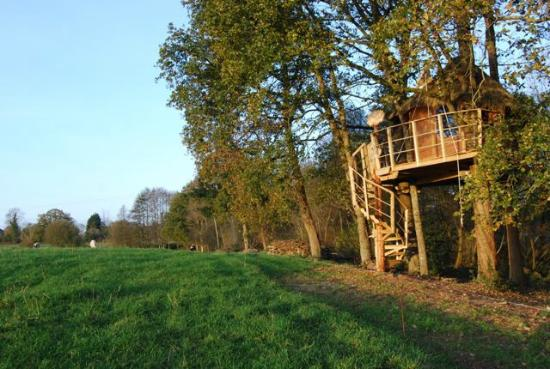 Saint-Pair-sur-Mer, Frankrig: Cabane dans les arbres