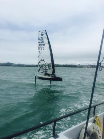 Explore - America's Cup Sail Auckland : We also had an opportunity to see two of the professionals training for the next race in the har