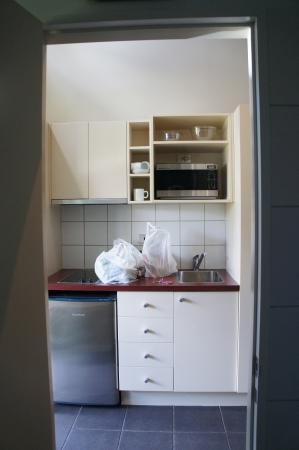 Punga Grove Motel & Suites: Kitchenette
