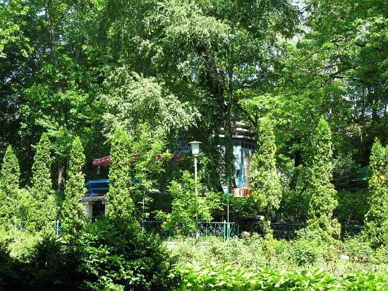 Vladikavkaz, Rosja: Park-02