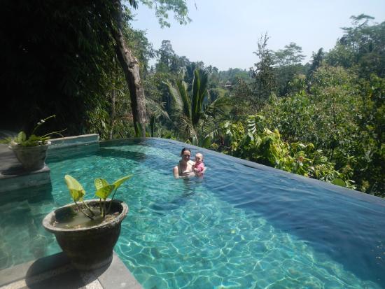 Infinity pool picture of villa awang awang ubud for Infinity pool ubud