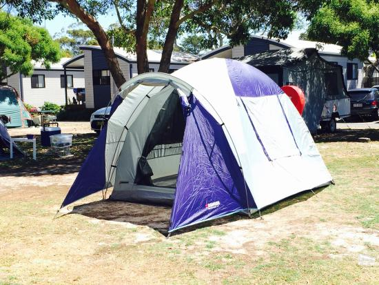 Shoal Bay Holiday Park: Tent set up