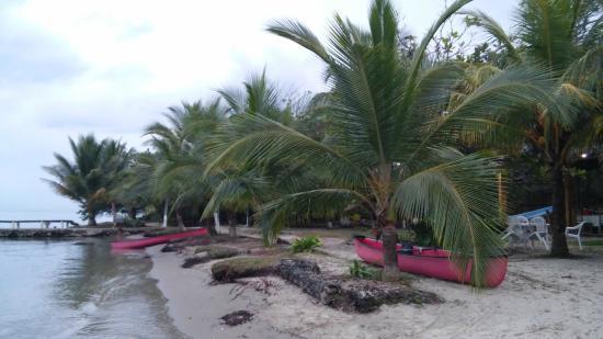Hotel Salvador Gaviota: Пляж днем