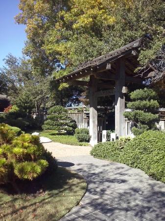Japanese Gardens Picture Of Fort Worth Botanic Garden Fort Worth Tripadvisor