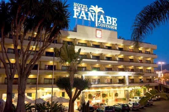 Hotel fanabe costa sur teneriffa webcam