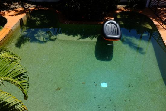 Ibis Styles Cairns: Hotel pool