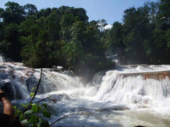 Cascades picture of cascadas de agua azul palenque for Cascadas de agua