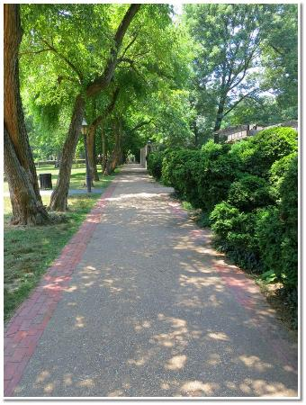 Montrose Park