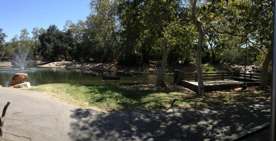 Irvine Regional Park: ↞Pano↠