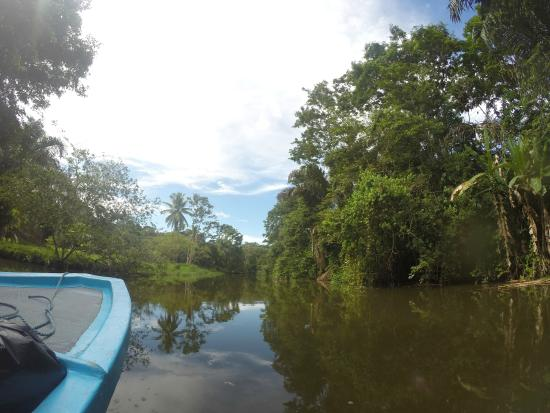 Casa Grande Ecolodge at Pacuare Reserve: Way to the nature reserve through the canals