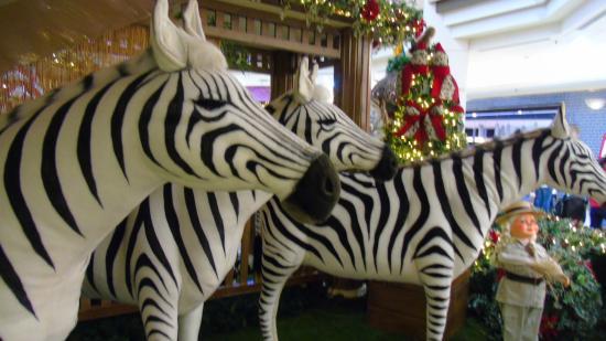 Shopping Eldorado: Natal do Eldorado